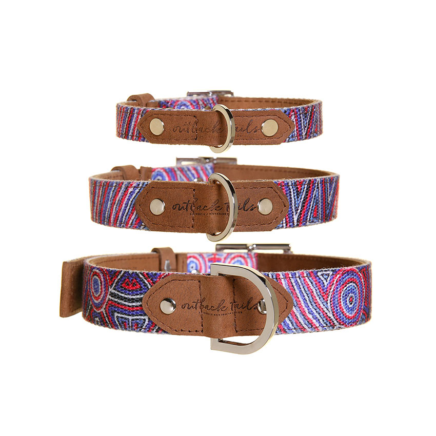 "Hundehalsband ""Digging for Truffles"" in 3 Größen"