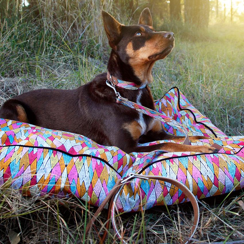 """Hundehalsband """"Sand Dunes"""" in 3 Größen"""