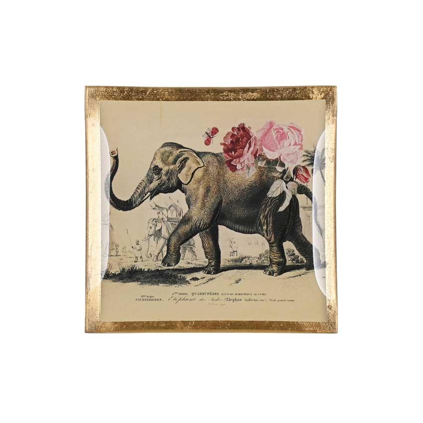 "Love Plates - Glasteller ""Elefant"" von Gift Company"
