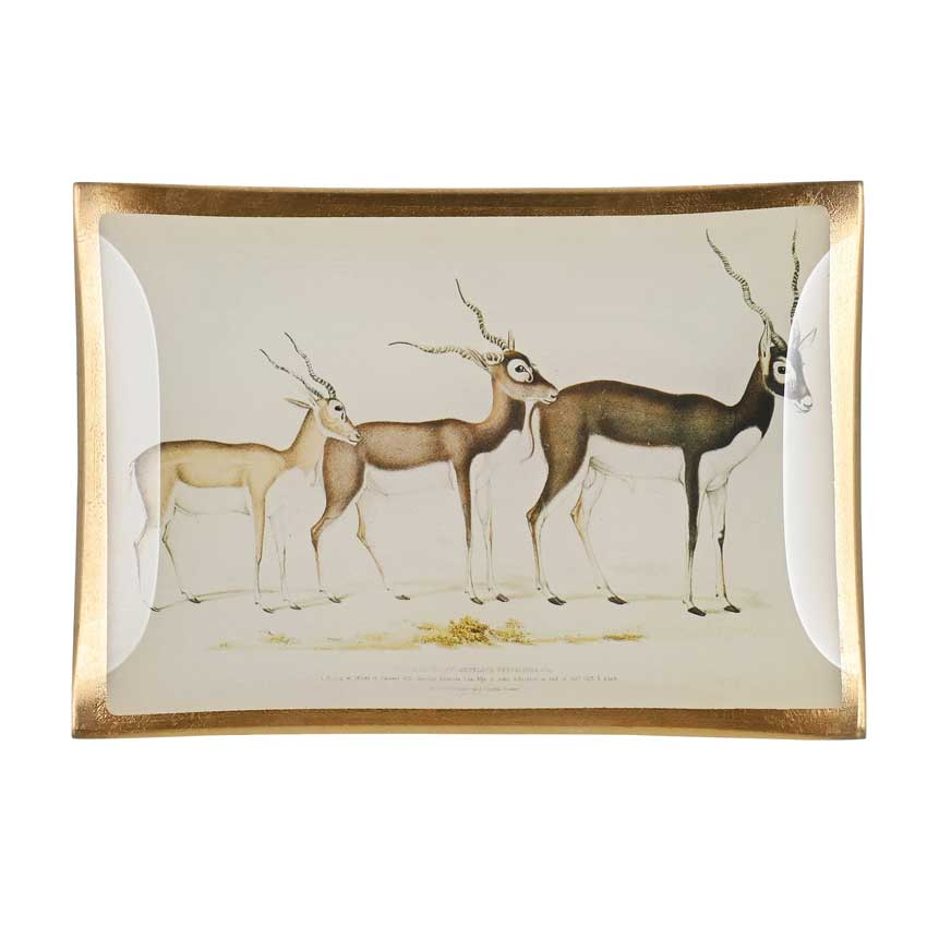 "Love Plates - Glasteller ""Antilopen"" von Gift Company"