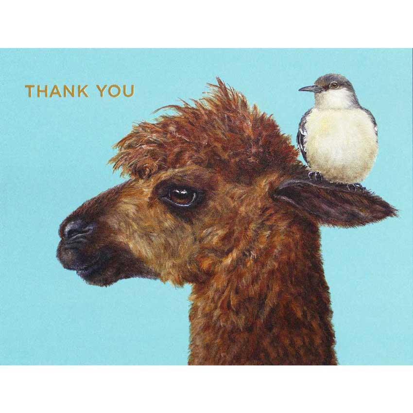 "Grußkartenset ""THANK YOU"" von Hester & Cook incl. Kuvert"